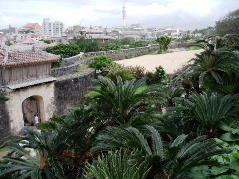 Egzotiškas vaizdas nuo Šiuri pilies komplekso