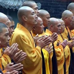 Kodėl Kinijoje budistai valgo mėsą?