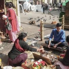 Plungiškė – apie išgyvenimus Nepale ir organizuojamą fotografijų parodą