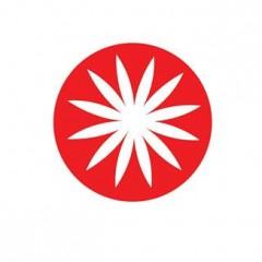 Tarptautinė jaunimo mainų programa Japonijoje